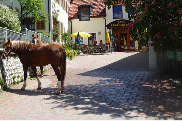 """Landgasthof """"Zum Elsabauern"""""""