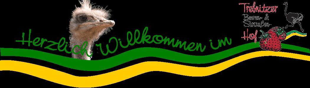 Trebnitzer Beeren- und Straußenhof